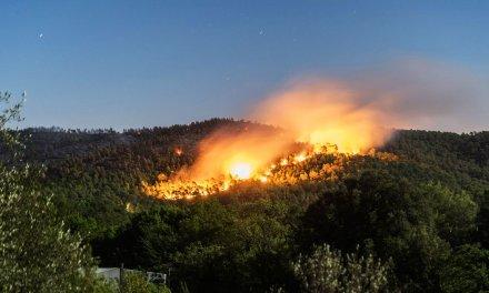 Réglementation de l'accès aux massifs forestiers et du travail en forêt